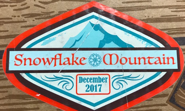 Review of the new Disney Treasures: Snowflake Mountain Box by Funko (Spoilers)